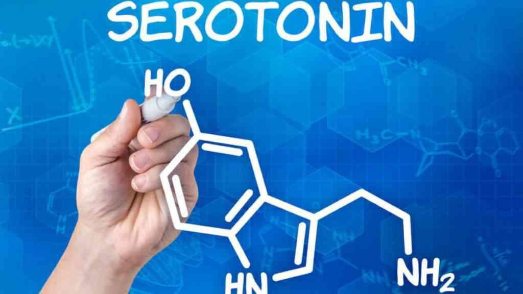serotonini ti einai