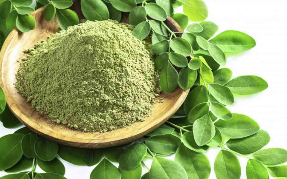 μορίνγκα. morigna oleifera, ιδιότητες μορίνγκα, οφέλη του μορίνγκα στην υγεία, superfoods