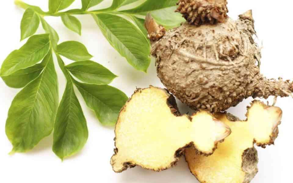 konjac, γλυκομαννάνη, οφέλη konjac στην υγεία