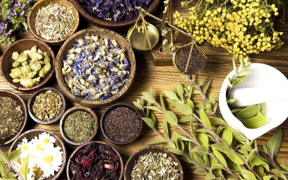 βοτανοθεραπεία, βότανα, τι είναι η βοτανοθεραπεία, ιστορία βοτανοθεραπείας, γιατί είναι δημοφιλής η βουανοθεραπεία, ασφάλεια βοτανοθεραπείας