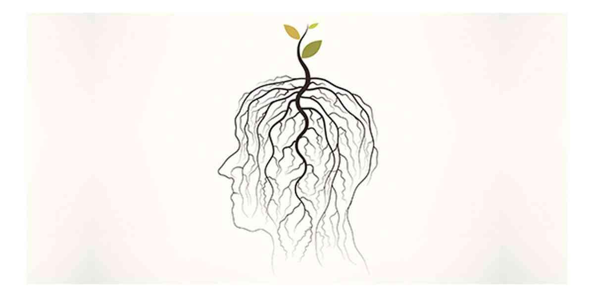 ρίζες του άγχους, ρίζες της κατάθλιψης, αιτίες άγχους και κατάθλιψης, ανεπάρκεια θρεπτικών συστατικών, χρόνιο στρες, οξειδωτικό στρες, δυσλειτουργία θυρεοειδή, φλεγμονή και πεπτικό,
