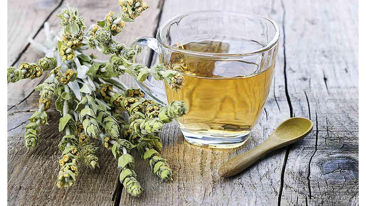 τσάι του βουνού, ιδιότητες τσαγιού του βουνού, οφε΄λη στην υγεία τσαγιού του βουνού