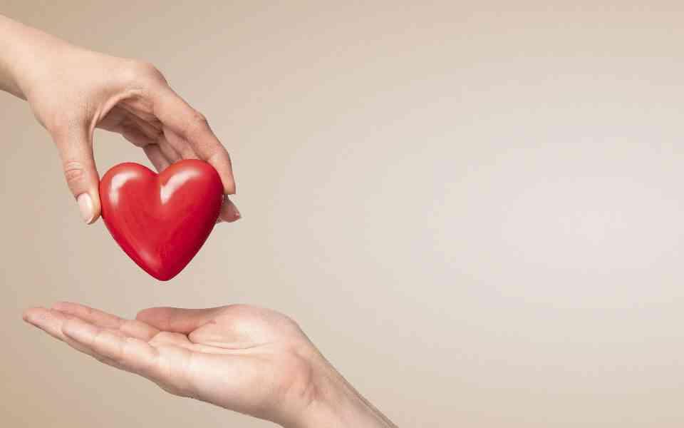 συμπόνια, αγάπη, τι είναι η συμπόνια, τι είναι η αγάπη, στοργική αγάπη, συμπόνια και αγάπη, συμπόνια στις μακροχρόνιες σχέσεις