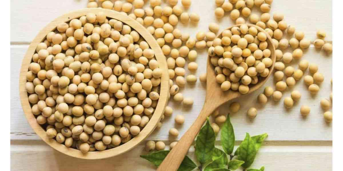 σόγια, διατροφική αξία σόγιας, θρεπτική αξία σόγιας, ιδιότητες σόγιας, θρεπτικά συστατικά σόγιας, οφέλη σόγιας στην υγεία