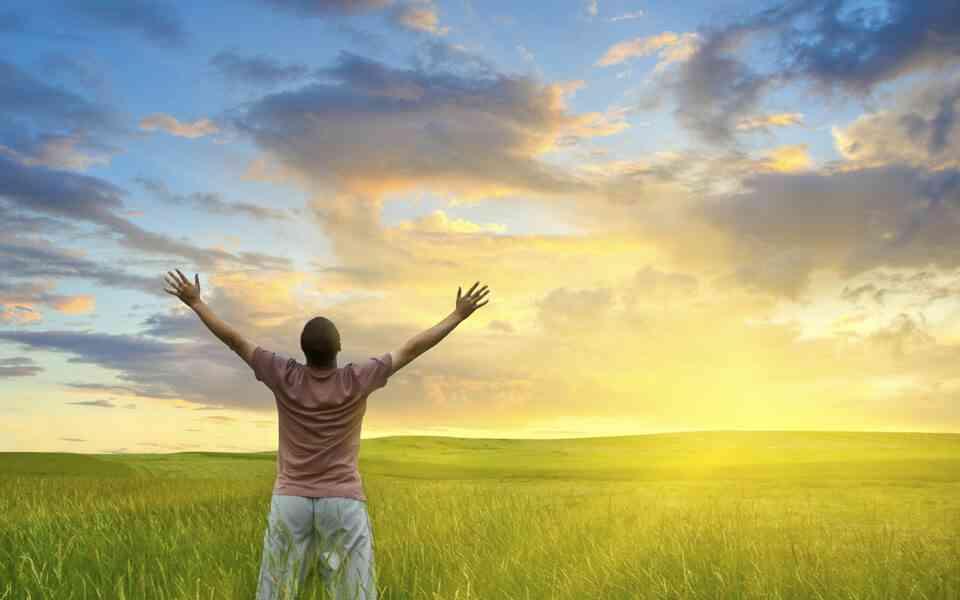παράδοξες οδηγίες για τη ζωή, νόημα της ζωής, σκοπός της ζωής