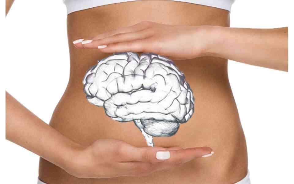στομάχι, δεύτερος εγκέφαλος, πως το στομάχι επηρεάζει την ψυχική υγεία, πως το στομάχι επιδρά στις διαταραχές της διάθεσης , σύνδεση στομάχου εγκεφάλου